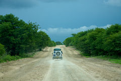 4x4 que conduz no bushland Fotografia de Stock