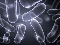 X-Ray abstract image of bacteria cells. Abstract image of magnified bacteria cells vector illustration