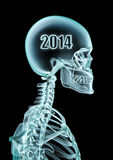 X-ray 2014. 3D render of x-ray with 2014 inside head Stock Images