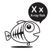 X X-ray fish cartoon and alphabet for children to learning and c. X X-ray fish animal cartoon and alphabet for children to learning and coloring page vector Royalty Free Stock Photo