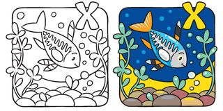 X-ray fish coloring book. Alphabet X Royalty Free Stock Images