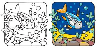 X-ray fish coloring book. Coloring picture of funny little x-ray fish in the sea, near the seabed Royalty Free Stock Image