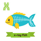 X-ray fish. X letter. Cute children animal alphabet in vector. F. Unny cartoon animals. Vector illustration Royalty Free Stock Images