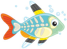 X-ray fish. Vector illustration of a small brightly colored tropical fish with a transparent body stock illustration