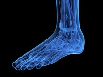 X-ray foot Royalty Free Stock Photography