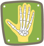 X-ray of hand. Illustration of isolated icon of x-ray of hand on white Stock Images
