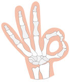 X-ray hand Royalty Free Stock Photos