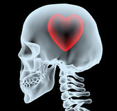 X-ray of a head with the heart instead of the brain Royalty Free Stock Image