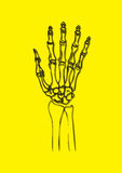 X-ray of human hand - vector. X-rayed hand full detailed illustration. Additional vector format is available for download Stock Photo