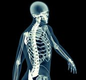 X-ray image of a man isolated on black Royalty Free Stock Photos