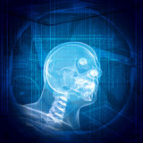 X-ray image of a man's head Stock Photos