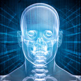 X-ray image of a man's head Royalty Free Stock Photo