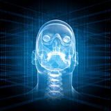 X-ray image of a man's head Royalty Free Stock Photos