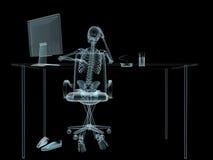 X-ray sceleton vector illustration