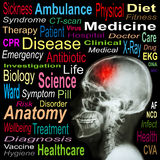 X-ray skull and Stroke and Medical word cloud Stock Image