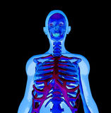 X rayo Foto de archivo