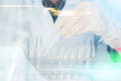 (SCIENCE) Scientist is certain activities on experimental scienc Stock Photos