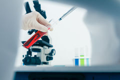 (SCIENCE) Scientists are certain activities on experimental scie Royalty Free Stock Image