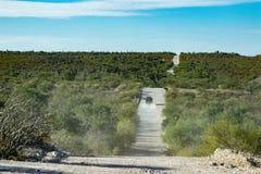 4x4 som är offroad i väg för öken för Baja California landskappanorama Royaltyfri Foto