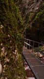 & x22 7 stairs& x22  φαράγγι Στοκ Φωτογραφίες