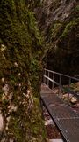 & x22; 7 stairs& x22; kanjon arkivfoton