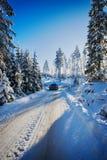 4x4, suv, das in schneebedecktes Gelände fährt Stockbild