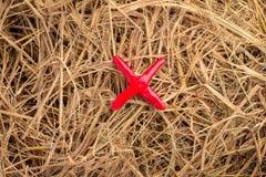 X symbol on hay texture Royalty Free Stock Photo