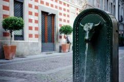 & x22; Toret& x22; , typisk offentlig springbrunn av Turin & x28; Italy& x29; arkivbild