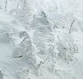 Iced Trees Monsters in Zao stock images