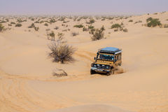 4X4 vehicle drives around the sand dunes of the Sahara Desert. Stock Photos