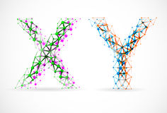 X and Y chromosomes Royalty Free Stock Image