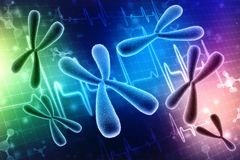 Concept of biochemistry X and Y chromosomes. 3d render. X and Y chromosomes. Genetics concept. Concept of biochemistry with dna molecule isolated in medical stock illustration