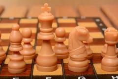 Xadrez com figura do rei no centro com outros penhores Imagens de Stock Royalty Free