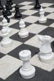 Xadrez de jogo ao ar livre Fotos de Stock Royalty Free