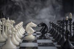 A xadrez Knights cara a cara fotografia de stock royalty free