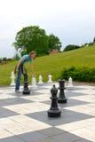 Xadrez no parque Imagem de Stock Royalty Free