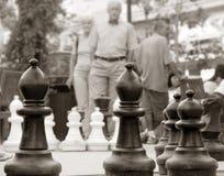 Xadrez no parque Imagens de Stock Royalty Free