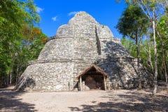 Xaibe mayan pyramid i Mexico Arkivfoto
