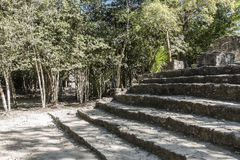 Xaibe pyramid in Coba, Mexico Royalty Free Stock Images