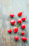 Xanadu Habanero. Scattered red Habanero chilis - important part of Mexican cuisine stock photography