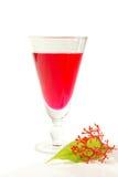 Xarope vermelho para cocktail Fotografia de Stock