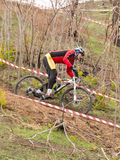 XC rider moving down. XC rider moving down from hill at high speed. Cross-country cycling trail Stock Images