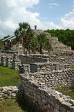 Xcambo Mayan Ruins Royalty Free Stock Image