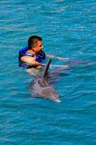 Xcaret park, Mexico. XCARET, MEXICO - NOV 7, 2016: Dolphins attraction of the Xcaret,  Maya civilization archaeological site, Yucatan Peninsula, Quintana Roo Stock Photography