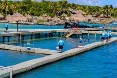 Xcaret park, Mexico. XCARET, MEXICI - NOV 7, 2016: Beautiful beach of the Xcaret,  Maya civilization archaeological site, Yucatan Peninsula, Quintana Roo, Mexico Stock Images