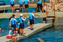 Xcaret park, Mexico. XCARET, MEXICO - NOV 7, 2016: Unidentified paople work for the Dolphins attraction of the Xcaret,  Maya civilization archaeological site Royalty Free Stock Photos