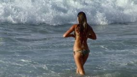 Xcorps TV - Bikini Girl Romps Surf Hawaii. Xcorps TV Surfing North Shore - Girl Romps In Surf - Oahu Hawaii stock footage