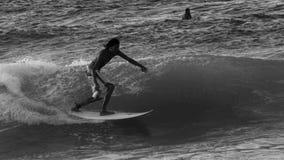 Xcorps TV som surfar Hawaii den norr kusten 20 BW stock video