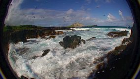 Xcorps TV Surfing Hawaii Shore Scene Fish Eye 1. Waves and Kelp on Rocks stock video footage