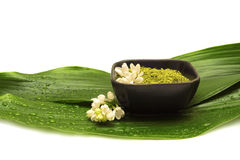 Xenna dos termas, flor e folha verde Fotografia de Stock Royalty Free